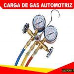 <strong>Carga de Gas Automotriz</strong>